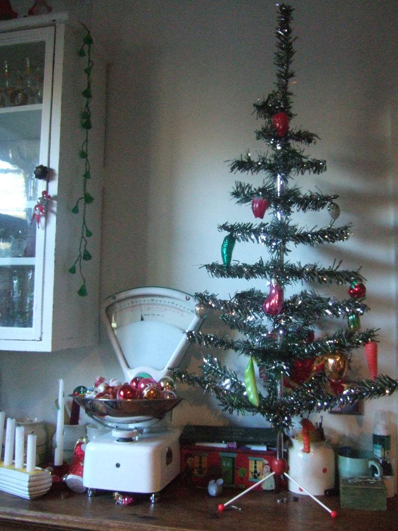 Christmas 2008 038