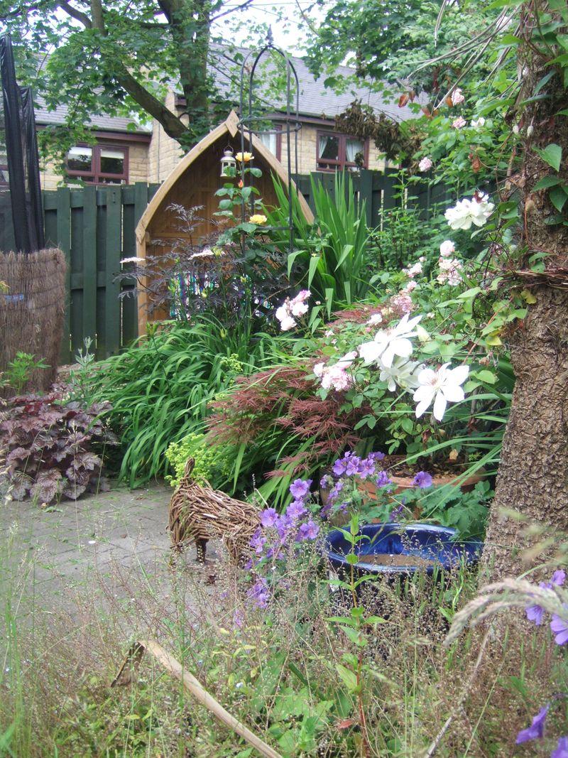 Steph's garden 002
